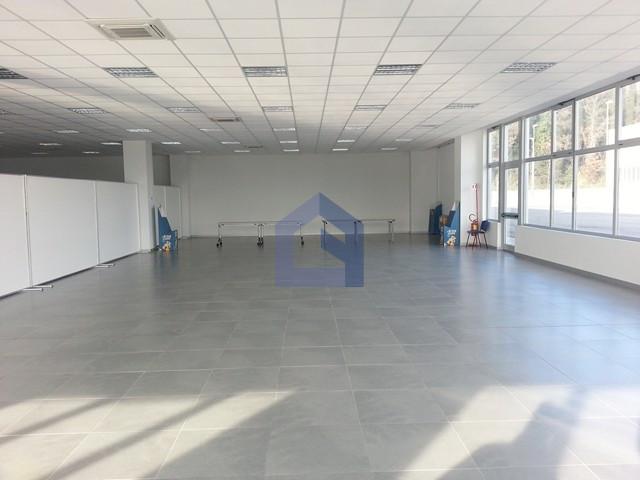 Nuovissimo locale uso ufficio di 560 mq studio for Affitto locale uso ufficio