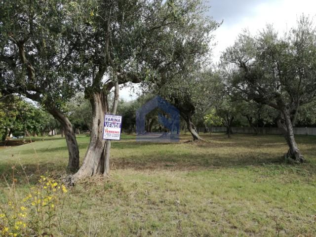 (Italiano) Lanciano – Terreno edificabile per la tua villa