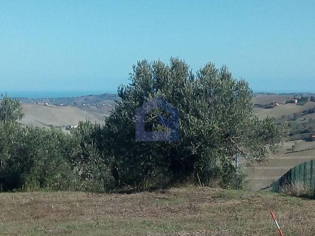 Atessa:due lotti edificabili con vista mare e monti